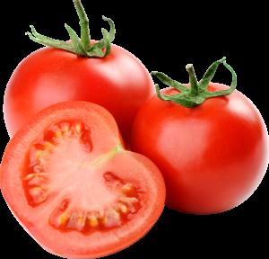 tomates viveros de plantas